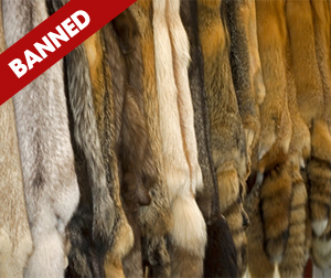West Hollywood Bans the Sale of Fur