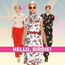Hello, Birdie! How to Wear Whimsical Bird Prints