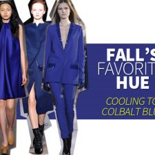 Fall's Favorite Color Cooling to Colbalt Blue