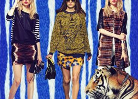 Make a Big Roar: Tiger Prints and Motifs